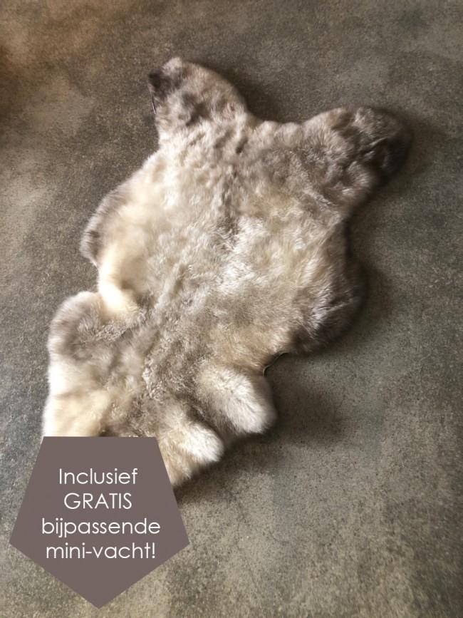 Grijze Nederlandse schapenvacht