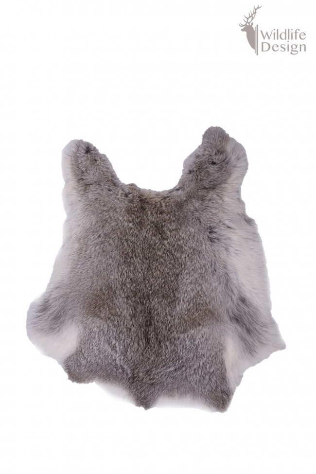 grijze konijnenvacht