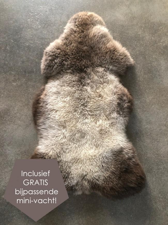 Grijze taupe Nederlandse schapenvacht