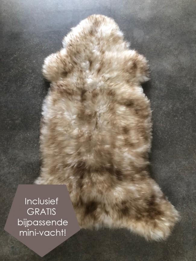 Nederlands schapenvacht
