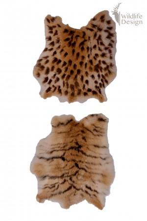 konijnenvacht met tijgerprint en panterprint