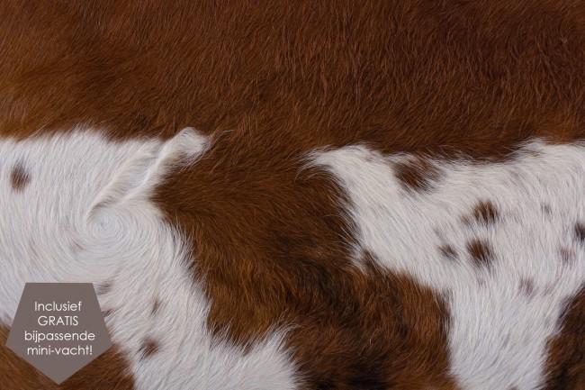 bruine bonte koeienhuid